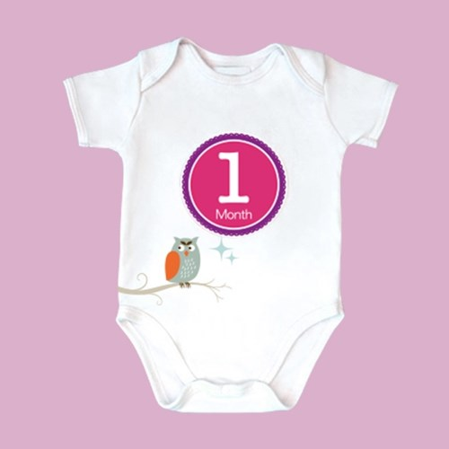 My Baby months sticker 마이 베이비 먼스 스티커