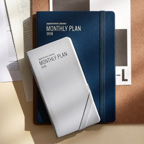 2018 Appointment Planner [S Monthly Plan]