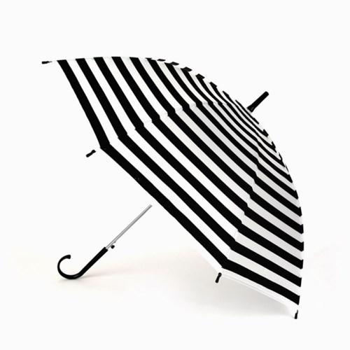 스트라이프 반투명 우산(5 options)