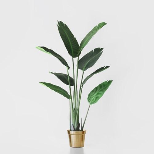 극락조 인테리어 나무(120cm)