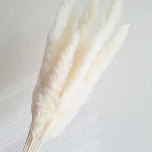미니팜파스 인테리어 조화장식(3color)