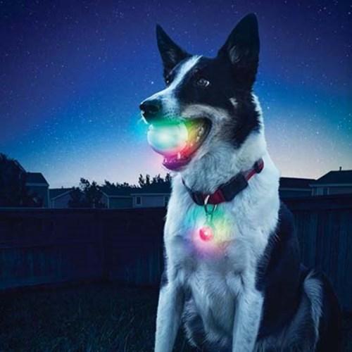 글로우 스트릭 LED 볼 - Disco