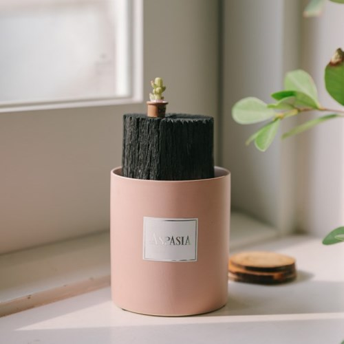 우리집 공기지킴이 핑크 숯화분-공기정화, 미세먼지제거_(100768743)