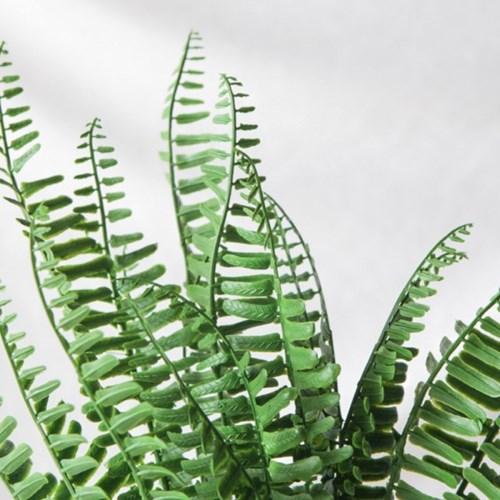 트로피칼 고사리잎 조화