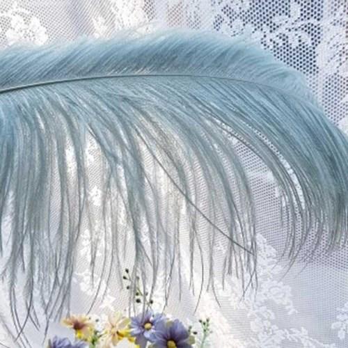 민트 오스타리치 깃털