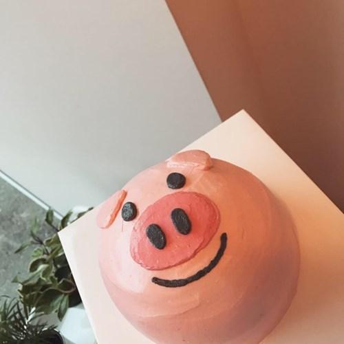 꿀꿀이케이크