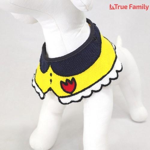 트루패밀리 강아지 고양이 유치원 케이프