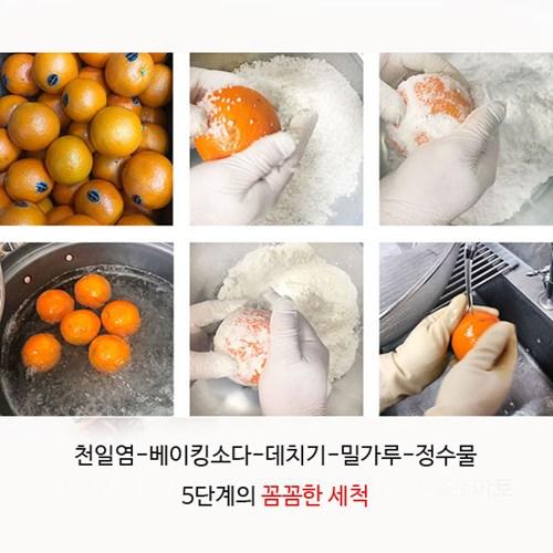 사과칩 500g 대용량 사과말랭이 건조사과 건사과 사과_(1506817)