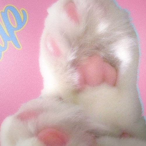 Boss Cat Mouse Pad_Pink