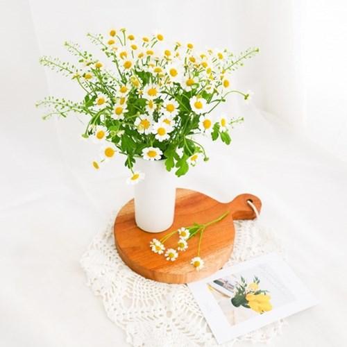[마트리카리아] 올망졸망 사랑스러운 꽃다발