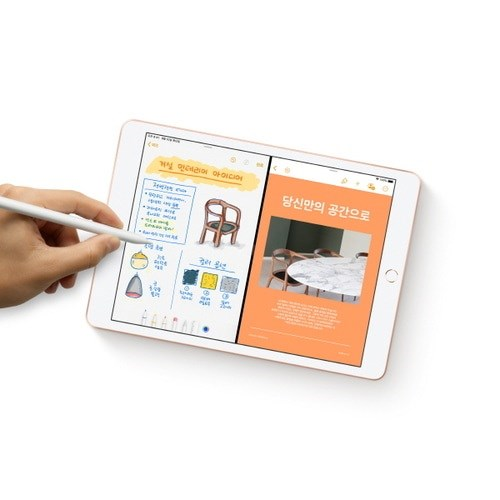 iPad mini (5세대) 7.9 LTE 256GB 실버