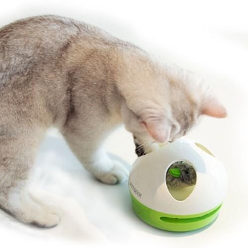 펫긱 숨바꼭쥐 (찍찍 소리나는 쥐 장난감)