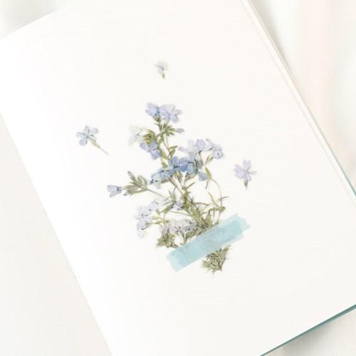 압화스티커_꽃잔디