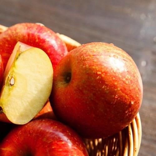 클래식 사과 보자기선물세트 (화이트/블랙)