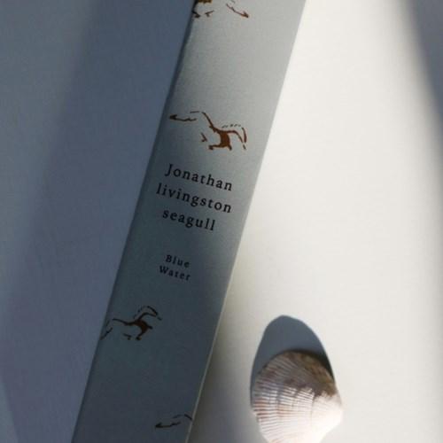 wax tablet _ Jonathan livingston seagull