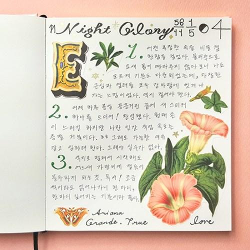[에코드소울] Paper Sticker - Night Glory