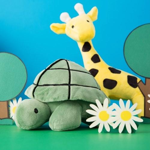 Turtle SS (Bruna Family)