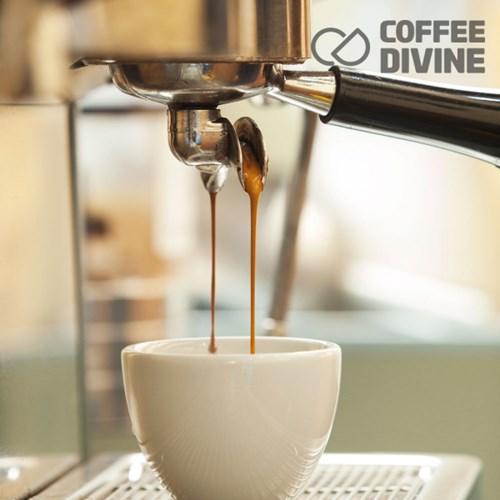 커피디바인 인도네시아 만델링G1 원두커피 1kg