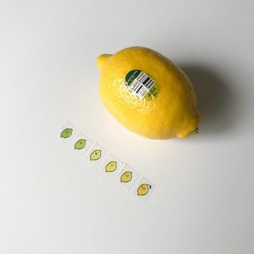 [secondmorning] 레모니 마스킹 테이프