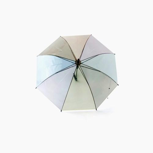 파스텔 투명 우산