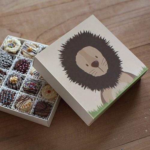 디비디 초콜릿 박스 -  Chou Chou