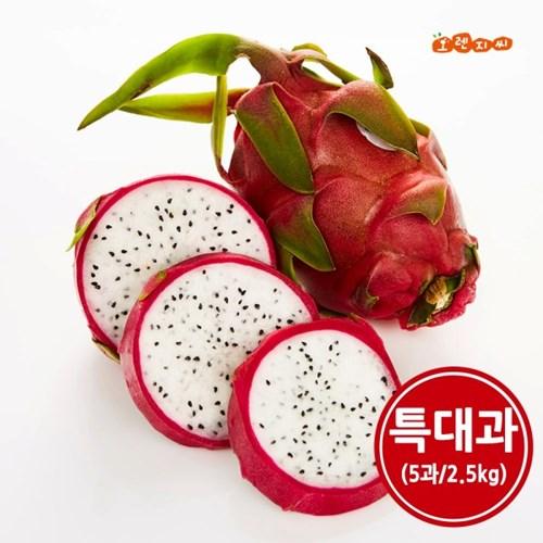 베트남 용과 5과(500g내외) 특대과 2.5kg_(1447189)