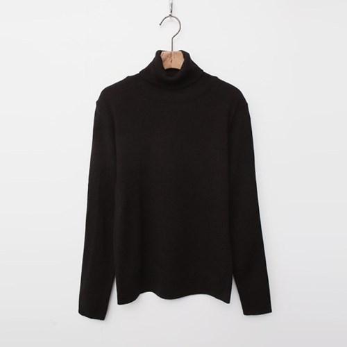 Solid Turtleneck Knit