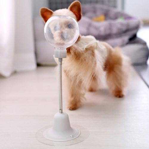고양이 강아지 노즈워크 코박고 스윙 장난감