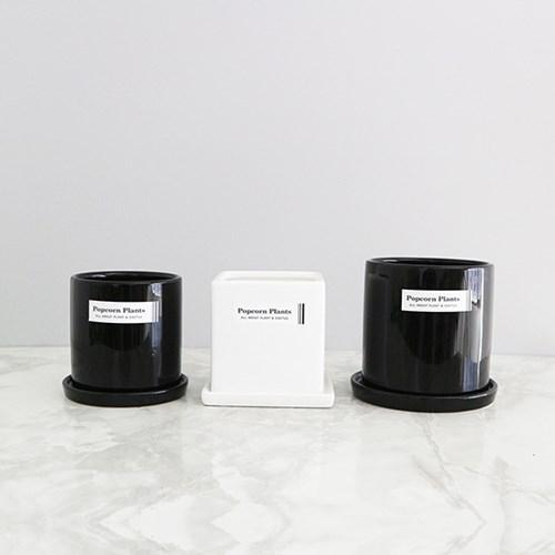 [하트6] 모여라~ 공기정화식물 화분