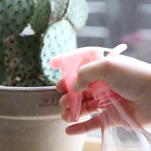 다육이&소형 식물 분갈이 용품 홈가드닝 SET