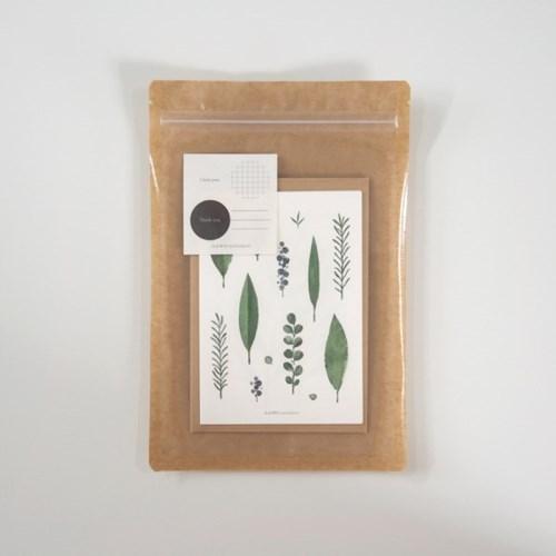 소소하다 나뭇잎 엽서 SET