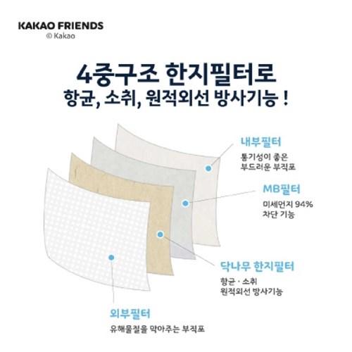 카카오프렌즈 닥터한지 브이 마스크 KF9 대형 [30매]