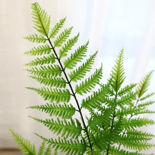 인테리어 인조나무 조화 테라조화분 루모라고사리60cm_(2385978)