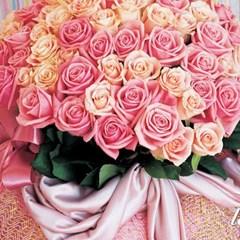르 씨엘(le ciel)(rose100)