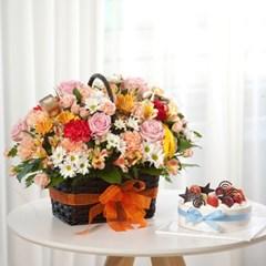 FN1720 꽃으로말하다+케익