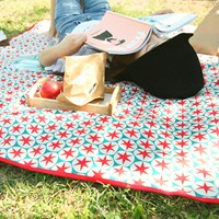 Have a Colorful Picnic