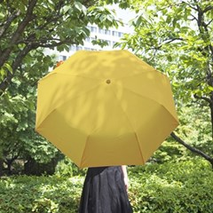 lifestudio 3단 솔리드 우산