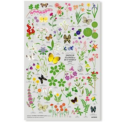 GRAPHIC DB - Flower&Butterfly of Korea 한국의 꽃과 나비