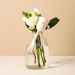 꽃송이가습기