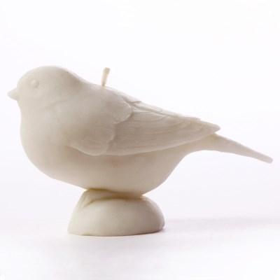 Bird In City - 박새