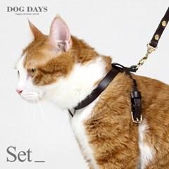 프리미엄 고양이 가슴줄+리드줄세트 브라운 (각인 펜던트 무료증정)