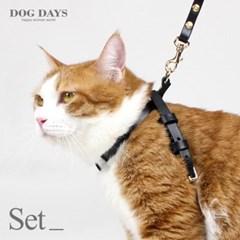 프리미엄 고양이 가슴줄+리드줄세트 블랙 (각인 펜던트 무료증정)