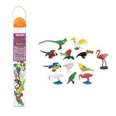 680404 새-튜브 Exotic Birds_(339580)