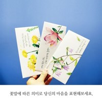 꽃말 용돈/편지봉투