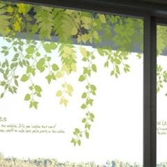 고급투명시트_행복한 나뭇잎 이야기02