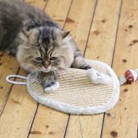 고양이 스크레처-사이잘 대형 생쥐