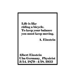 EPOK- Einstein Poster (50x70cm) 프레임포함