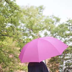 lifestudio 플레인 자동 장우산