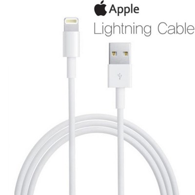 애플 규격 아이폰라이트닝 케이블
