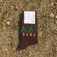 [Organic cotton] Jeju artye Carrot
